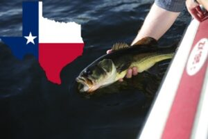 How Much Is A Texas Fishing License?