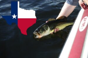 How much is a Texas fishing license