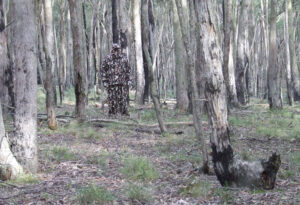 principles of camouflage and concealment