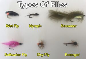 Types of fly fishing flies.