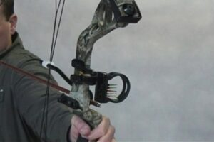 Compound Bow Comparisons 2011