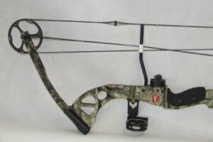 Compound Bow Comparisons 2010