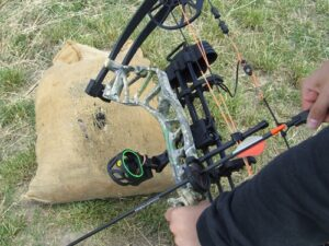 Field testing the Bear Legit compound bow.