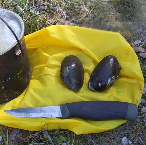 Dry bag uses foraging bag to collect freshwater mussels