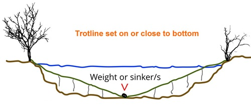 Fishing trotline with weights to get it down deeper.