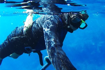 Spearfishing wetsuit. Male spearfishing with fish on belt.