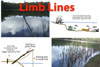 Survival limb line fishing.