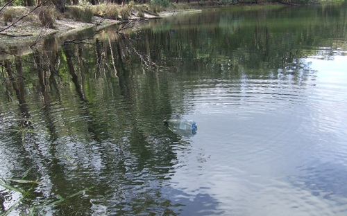 Old plastic bottle used as float for an survival fishing trotline.